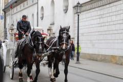 foto-km.com-2019-04-24-ZAMEK-WAWELSKI-W-KRAKOWIE-POLSKA-001