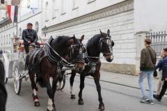 foto-km.com-2019-04-24-ZAMEK-WAWELSKI-W-KRAKOWIE-POLSKA-002