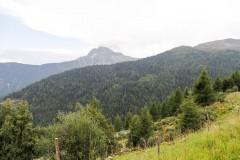 foto-km.com-2019-08-31-AUSTRIA-I-APLY-024