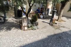 Foto-km.com-2019-09-02-ITALIA-LAZISE-PORT-020